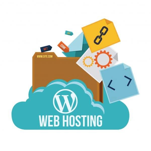 WordPress Website Hosting & Maintenance Plan